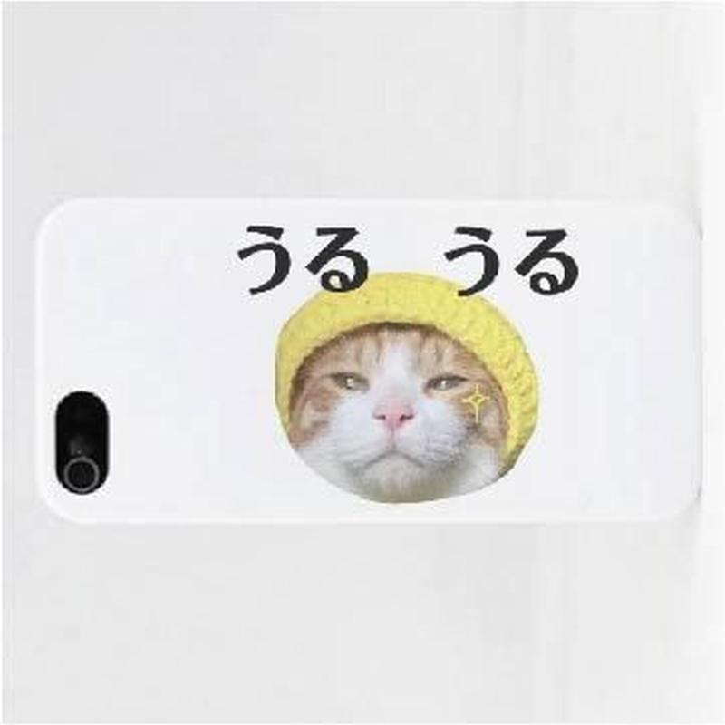 うるうるiPhoneケース Instagramで大人気のポン太ちゃんがiPhoneケースになりました!