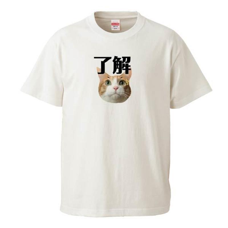 了解Tシャツ Instagramで大人気のポン太ちゃんがTシャツになりました!