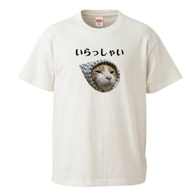 いらっしゃいTシャツ Instagramで大人気のポン太ちゃんがTシャツになりました!