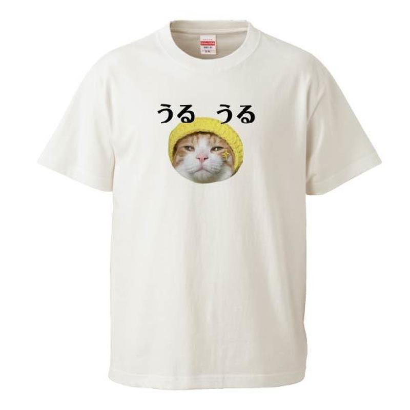 うるうるTシャツ Instagramで大人気のポン太ちゃんがTシャツになりました!