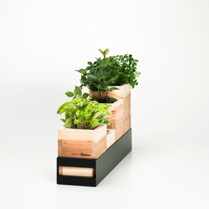 Planter S
