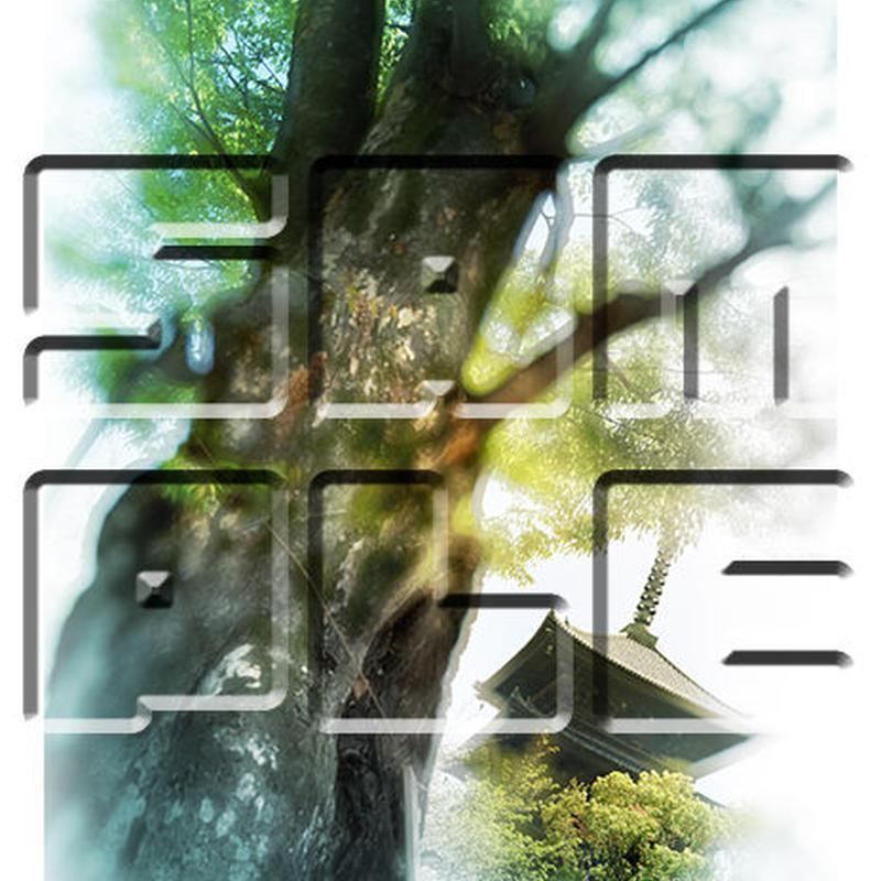 京都・東寺 ≪風景・フォトアート≫