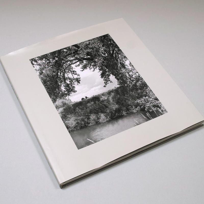 Robert Adams / Cottonwoods