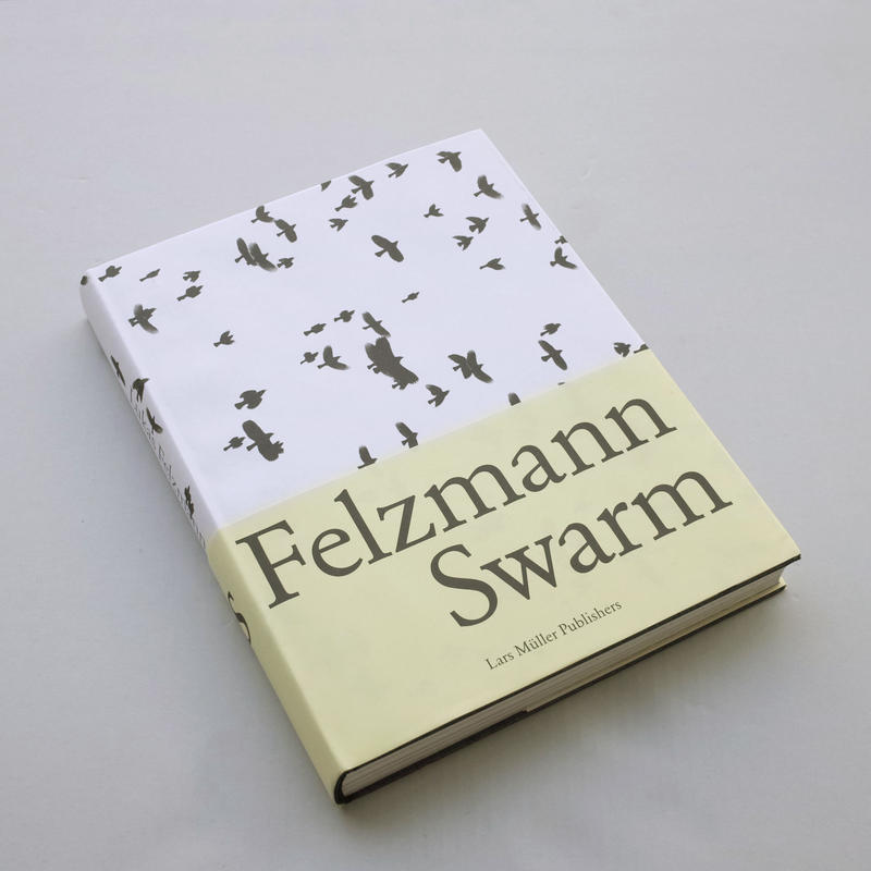 Lukas Felzmann / Swarm