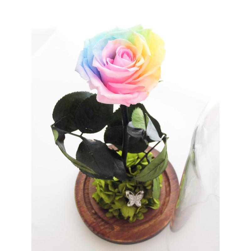 プリザーブドフラワー レインボーローズ ''Rainbow Dome'' ガラスドーム レインボーローズ茎までプリザーブドフラワー  :パステル: