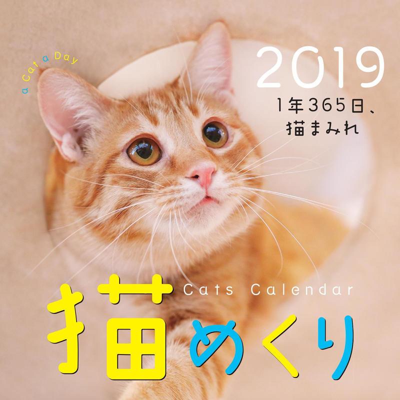猫めくり2019