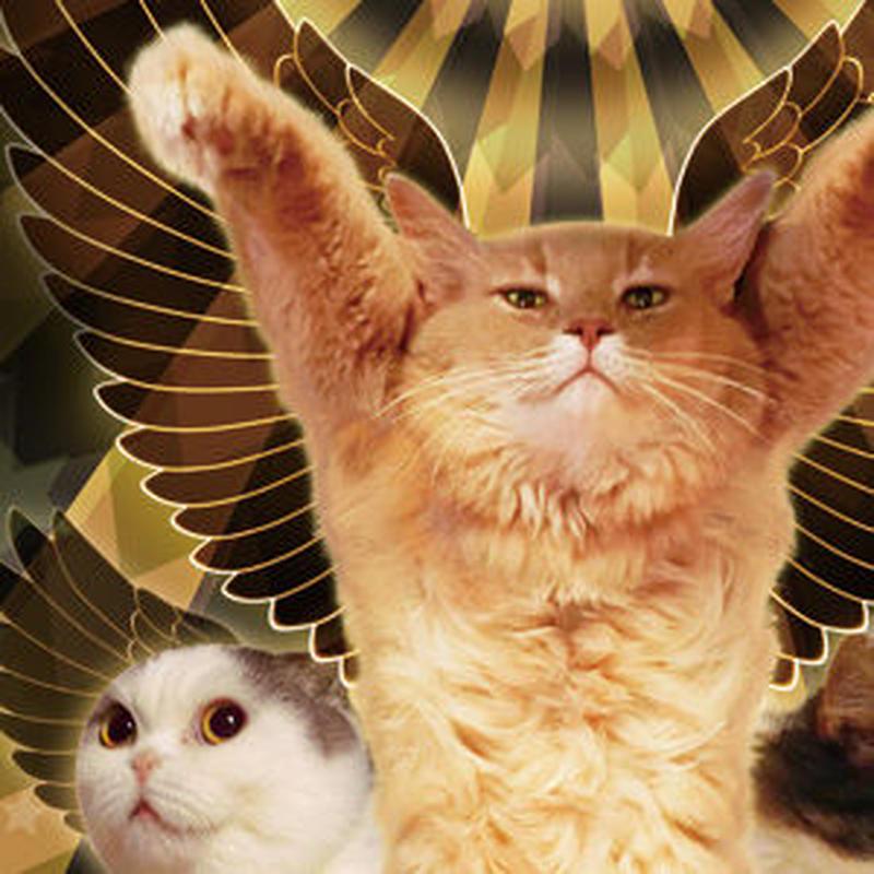 猫託ポストカード「両手に花」2枚セット