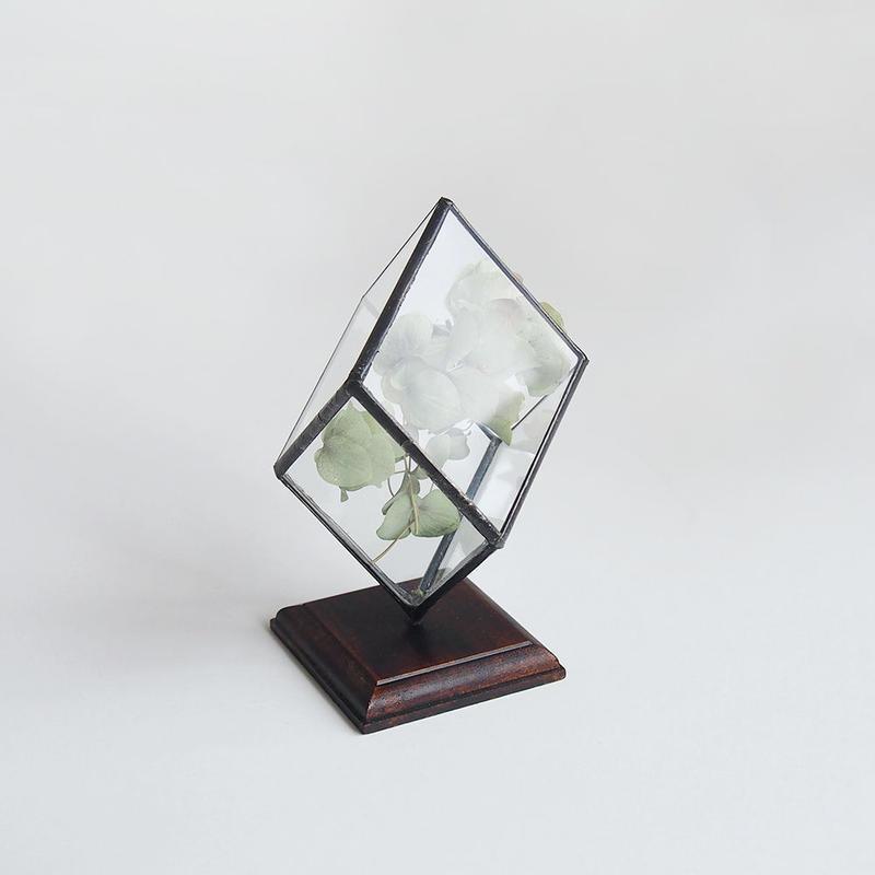 mini terrarium/rhombohedron/black