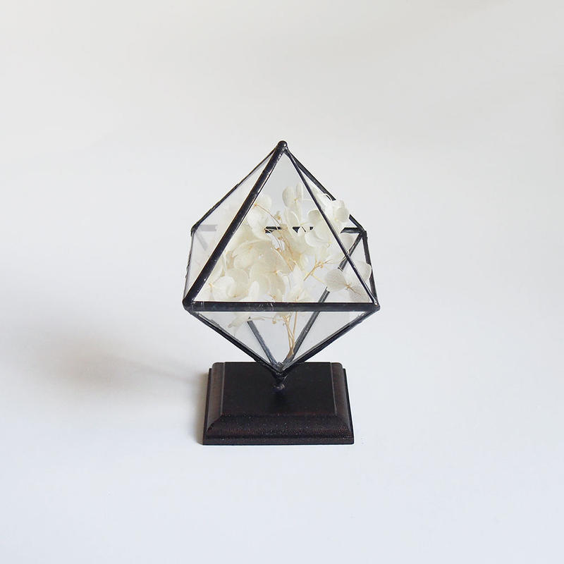 mini terrarium/regular octahedron/black