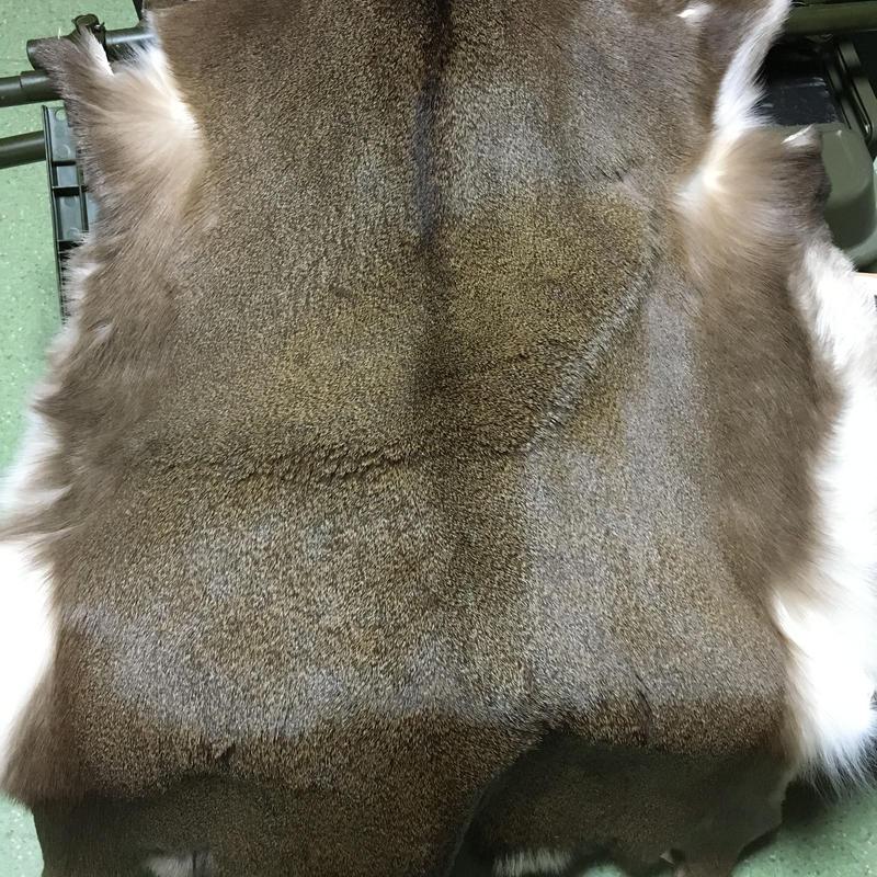 二ホンジカ毛皮 ※写真は参考品です。模様、大きさ、傷等の状態はそれぞれ異なります。