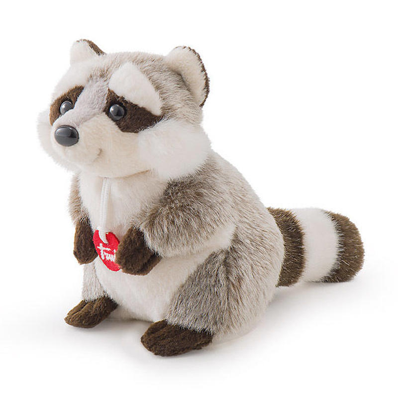 51237-Raccoon