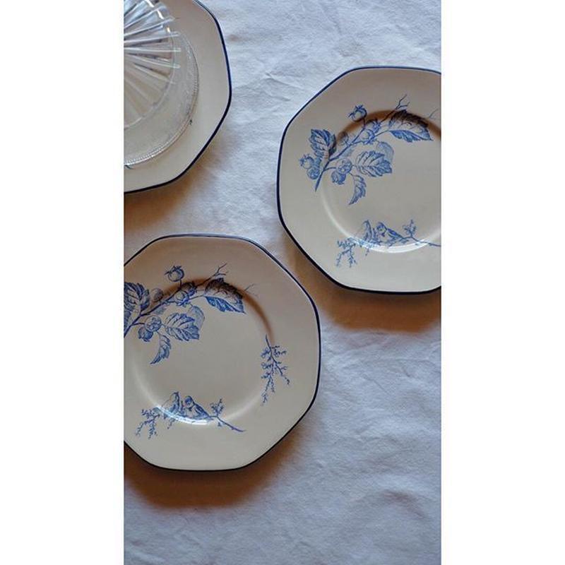 小鳥の絵のオクトゴナルプレート bleu