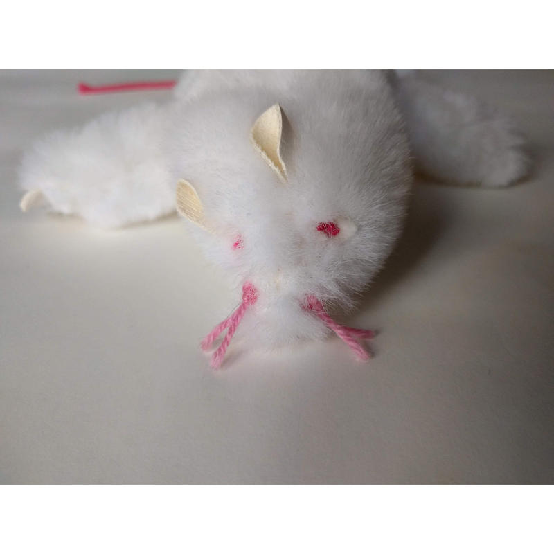 ヒューマウス(ヒゲ下向き)