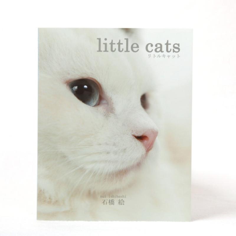 写真集「little cats」