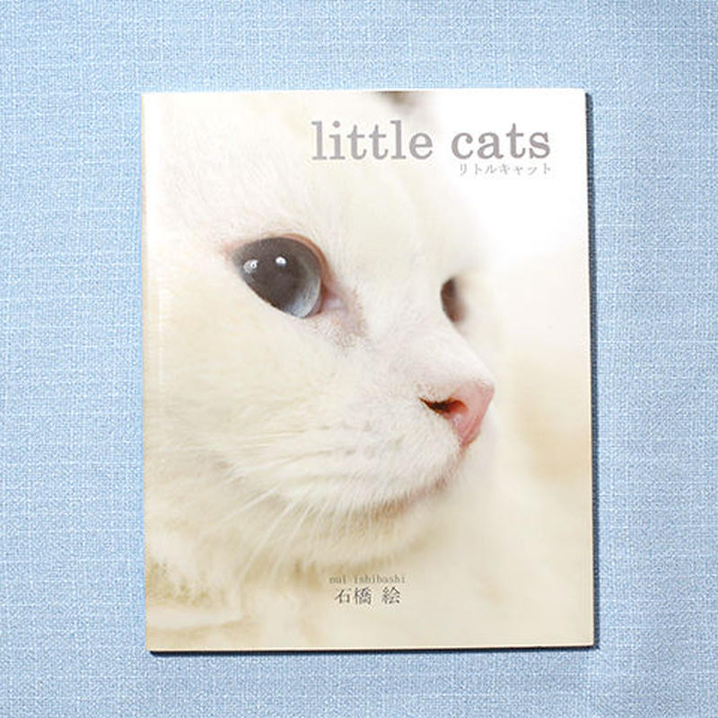 写真集「little cats」