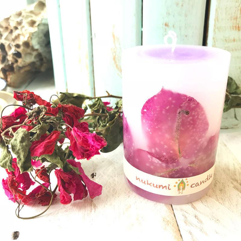 ブーゲンビリア紫