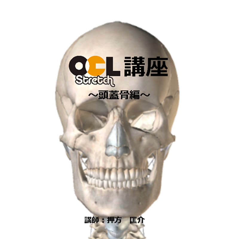 OCLストレッチ講座【頭蓋骨編】1枚組