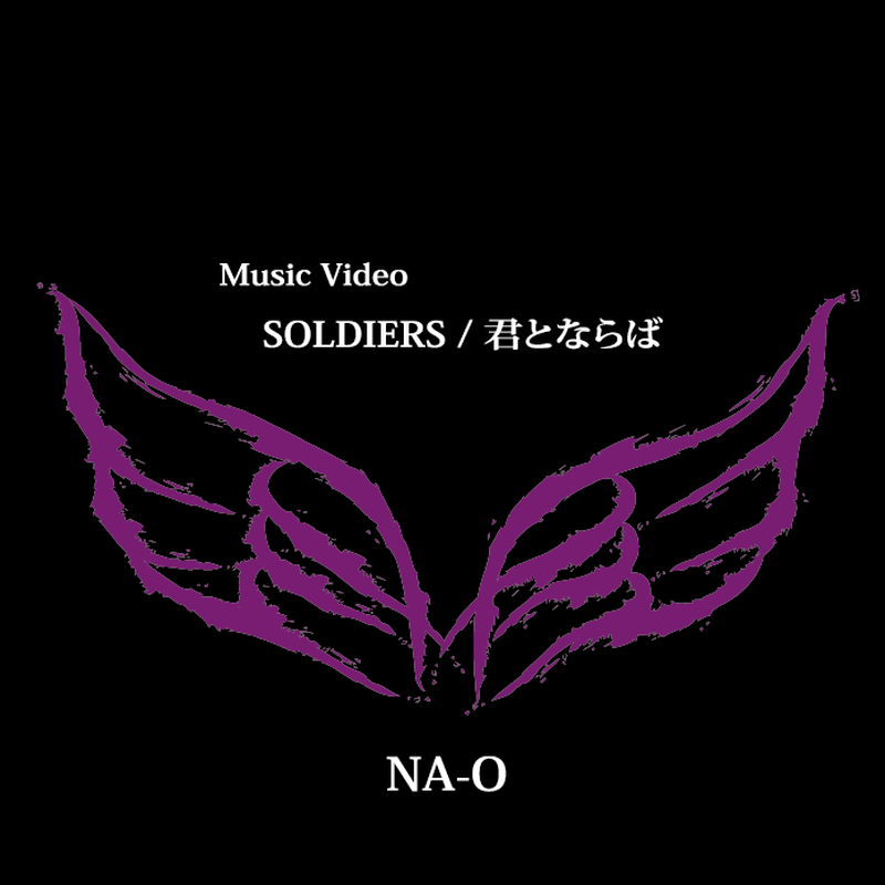 MUSIC VIDEO DVD 『SOLDIERS/君とならば』