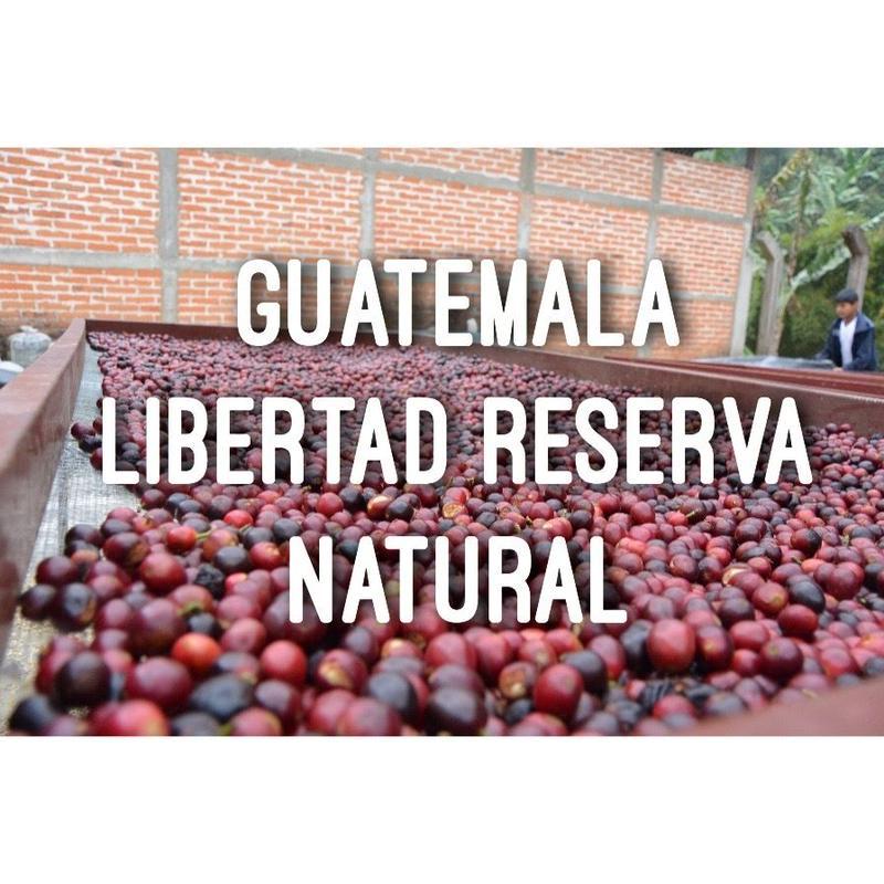 1kg【グァテマラ/GUATEMALA ラボルサ ナチュラル】深煎り