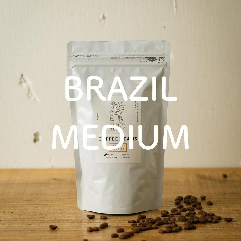 500g【ブラジル/BRAZIL】中煎り