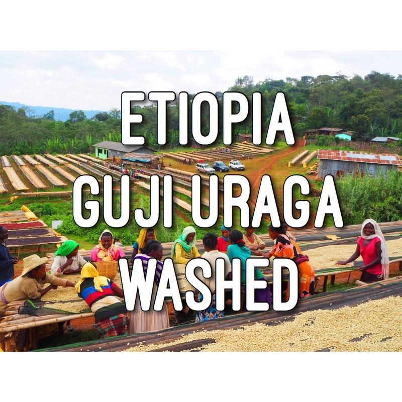 200g【エチオピア/ETHIOPIA】中煎り  ウォッシュド