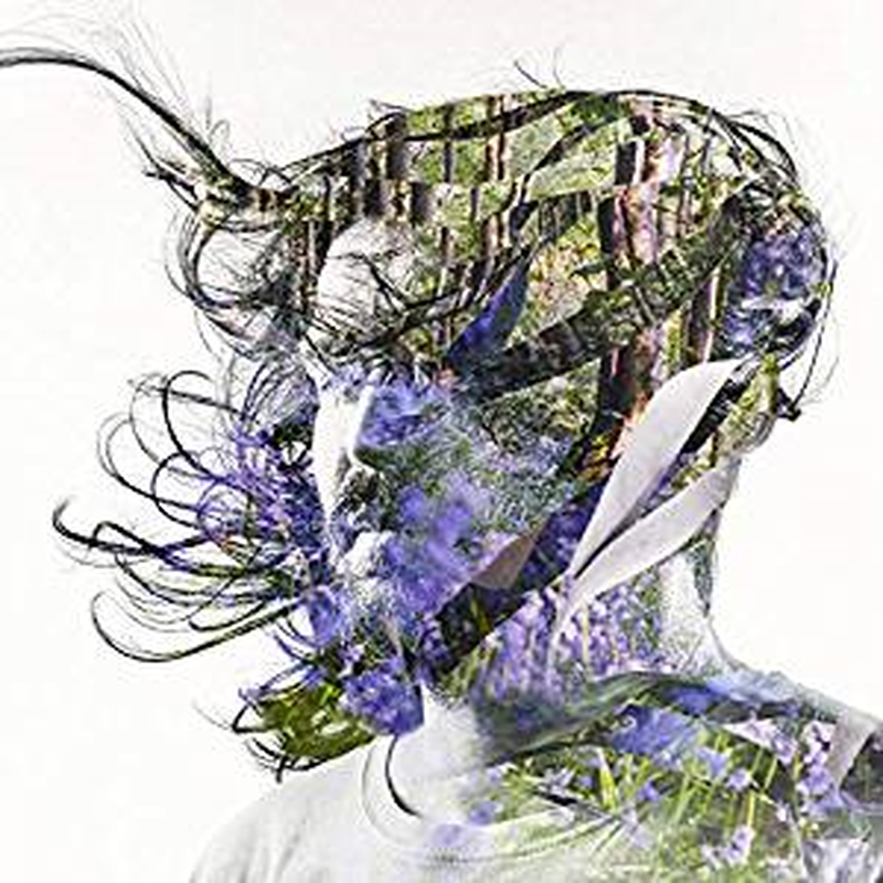 Bibio / Ribbons / 2LP(BLACK)