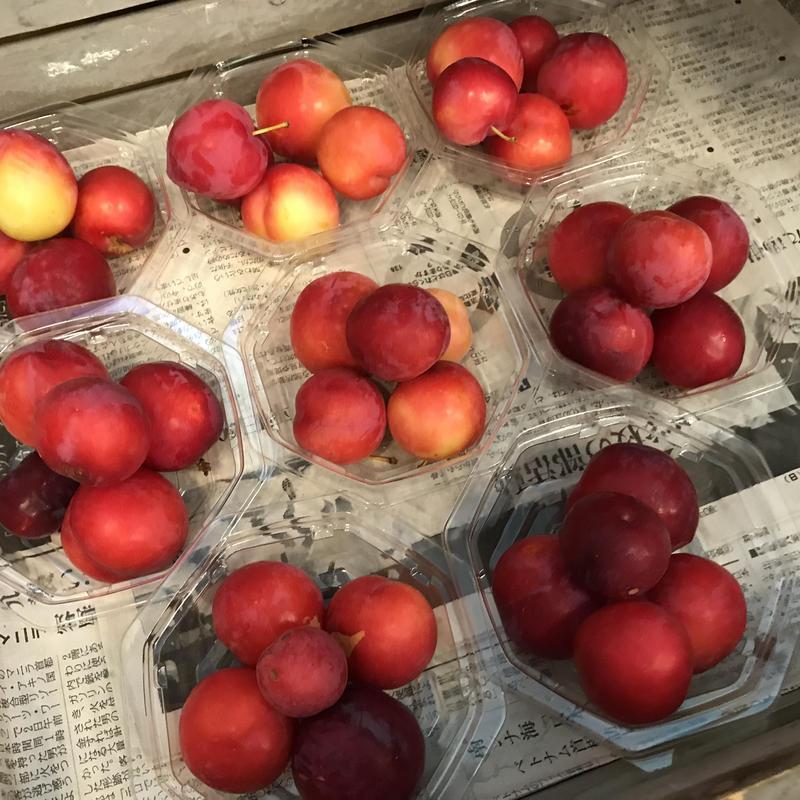 おおきな樹畑の果物※要冷蔵便