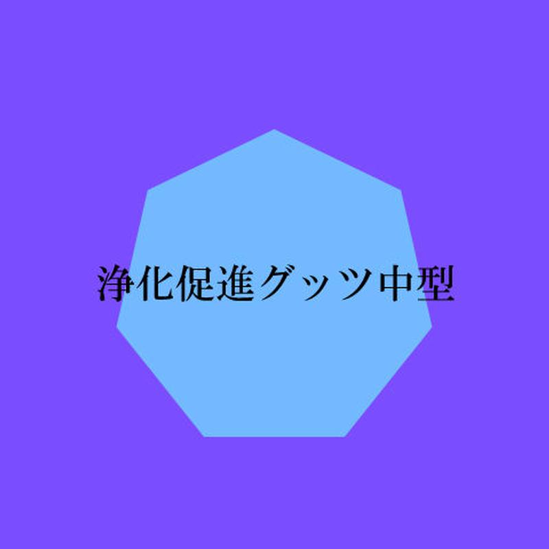 浄化促進サポートグッツ(中型)