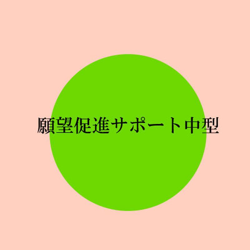 願望成就サポートグッツ(中型)
