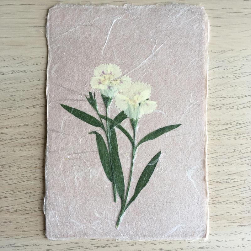 和紙はがきM07 (Post Card)
