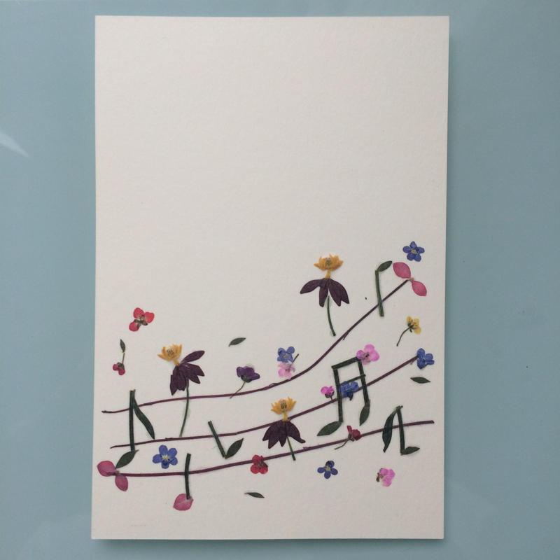メロディS02 (Postcard)