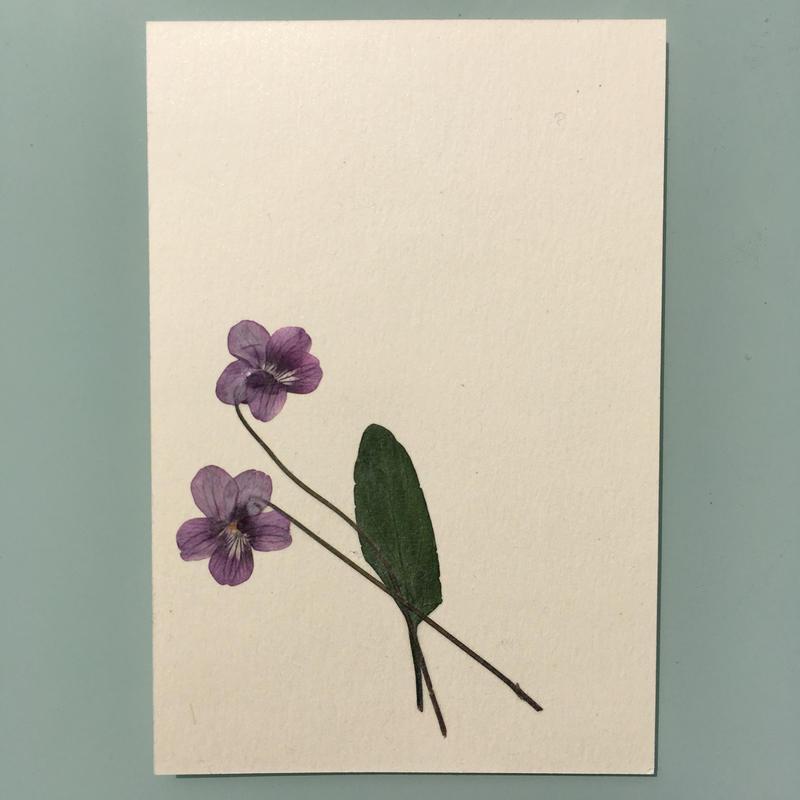 明日香オリジナルポストカード