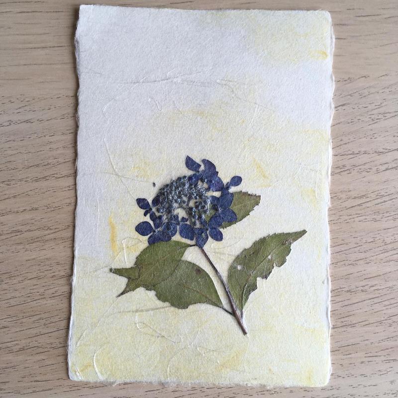 和紙はがきM06 (Post Card)