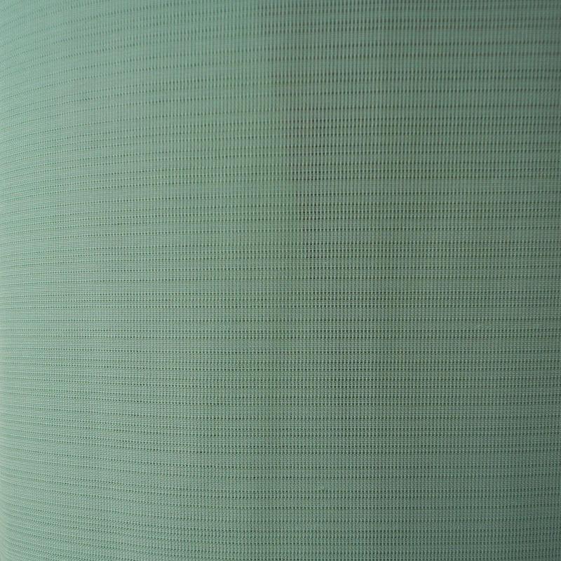 【夏・絽】明るいペパーミントの色無地 駒絽