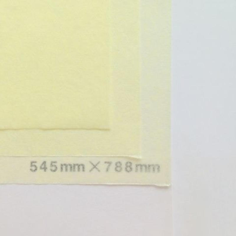 クリーム 14g  545mm × 394mm  400枚