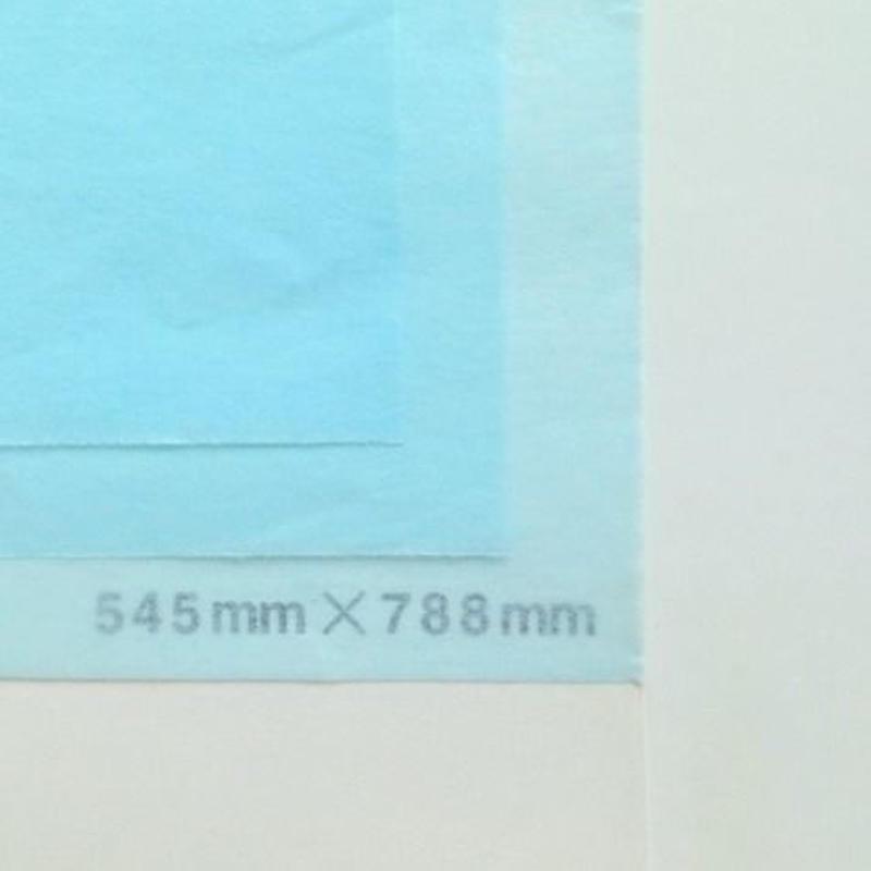 ライトブルー 14g 545mm × 788mm 50枚
