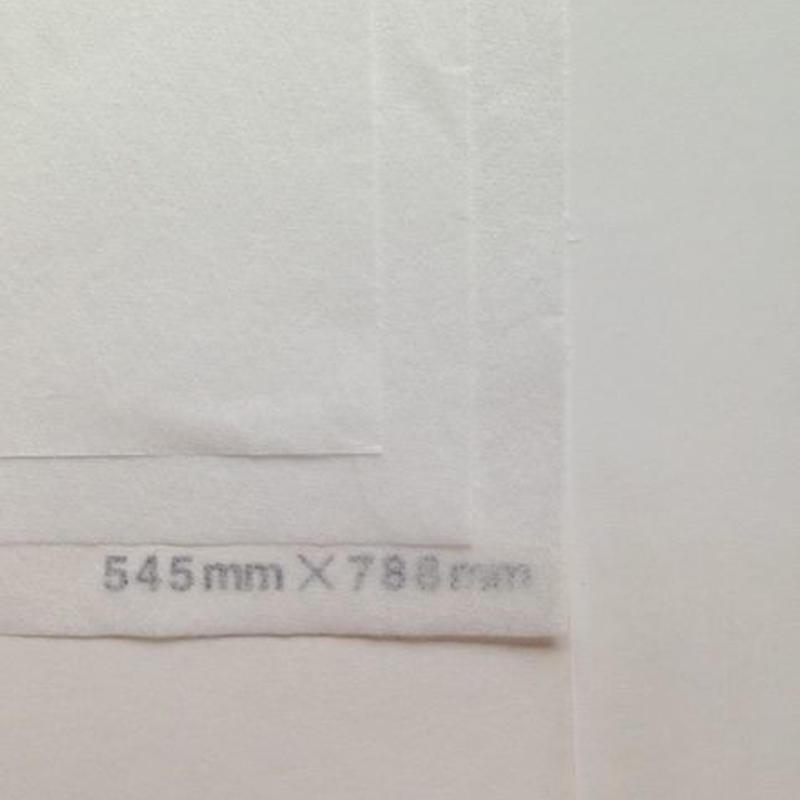 ホワイト 14g 545mm × 788mm 50枚
