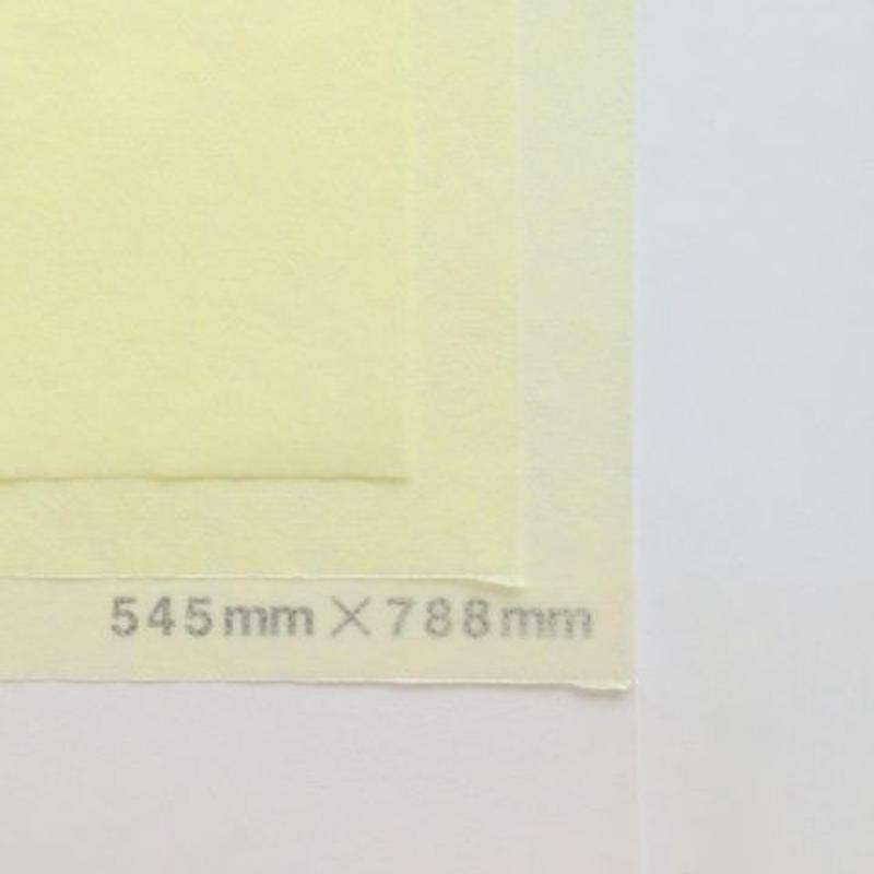 クリーム 14g   545mm × 394mm  100枚