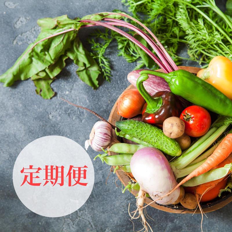 徳島産「自然栽培」&「Organic」おまかせ旬の野菜セット Mサイズ定期便 5.5㎏
