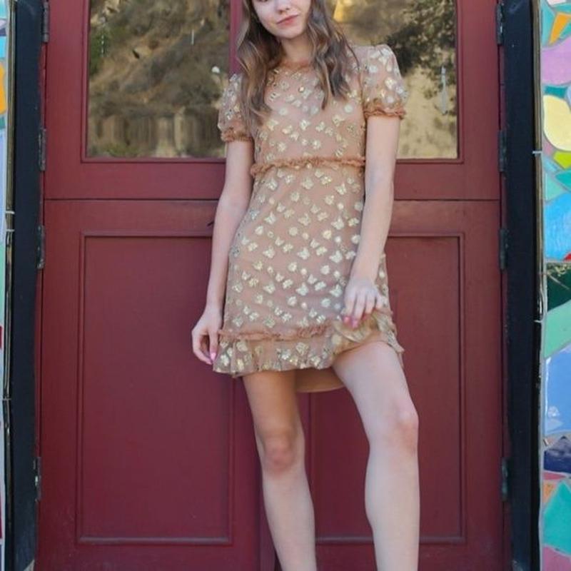 for love & lemonsGolden Garden Tulle Mini Dress ワンピース