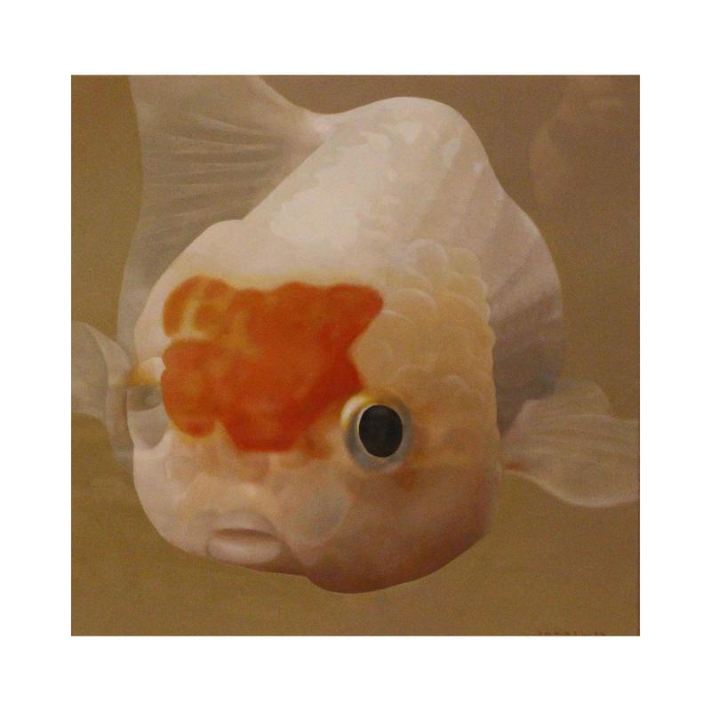 優雅に泳ぐ金魚[山下三千夫]