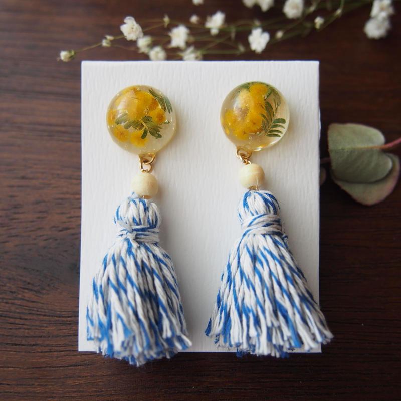 bonita  mimoza