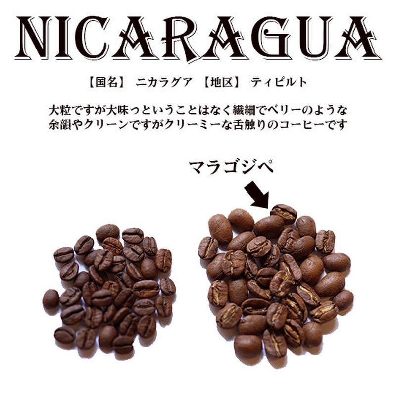 【国名】ニカラグア 【地区】ティピルト 1000g 深煎り
