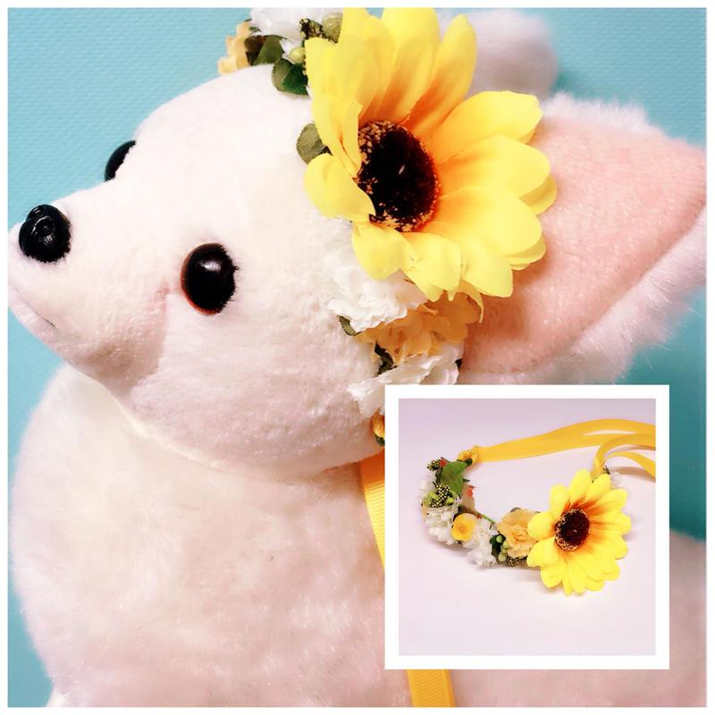 花冠/向日葵