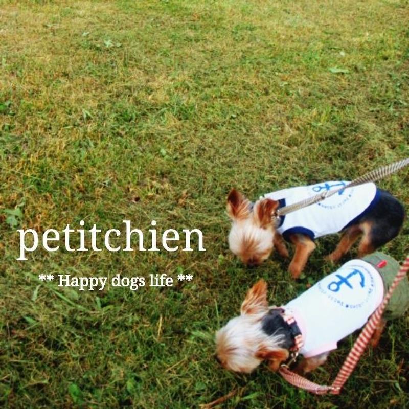 ★ 犬服雑貨petitchien  ★2019.4.20【Information】