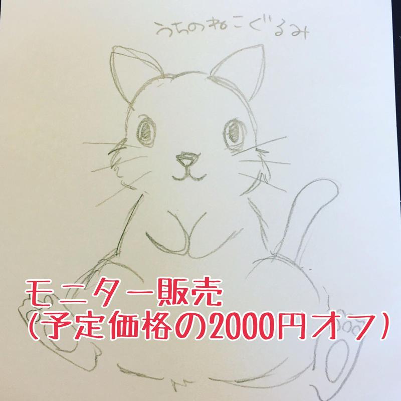 うちの猫ぐるみ(モニター販売)