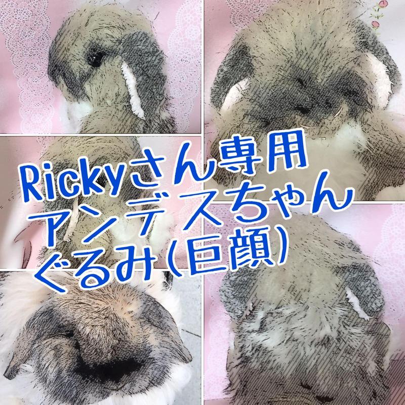 Rickyさん専用アンデスちゃんぐるみ