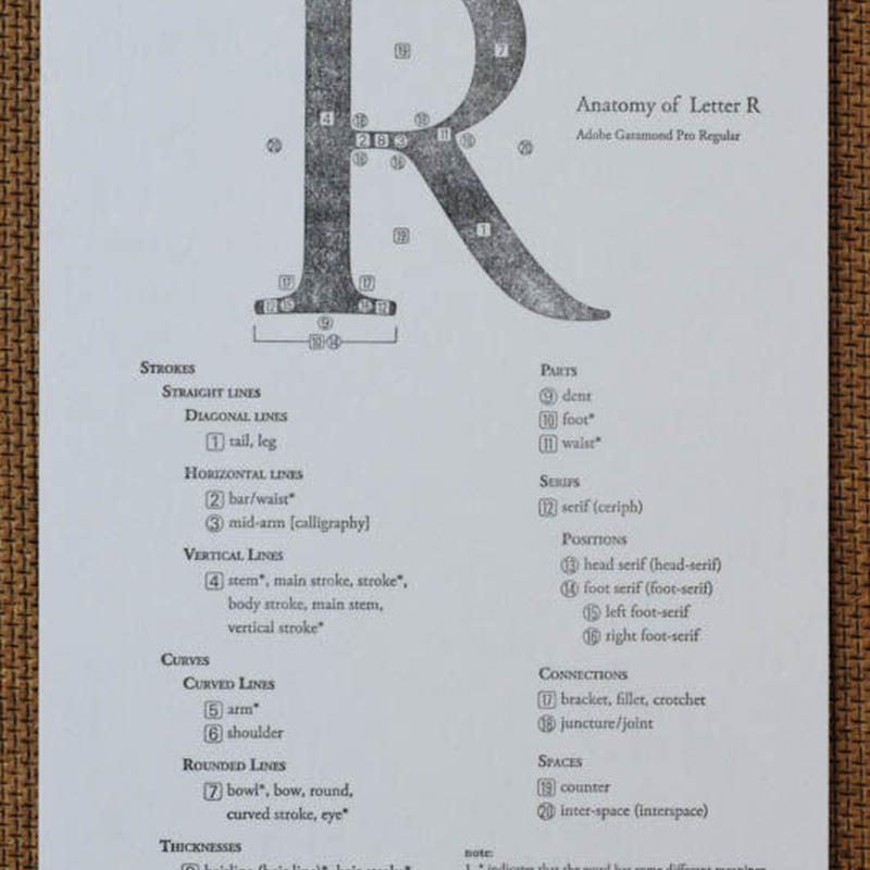 "Letterpress Type Anatomy Postcard ""R"""