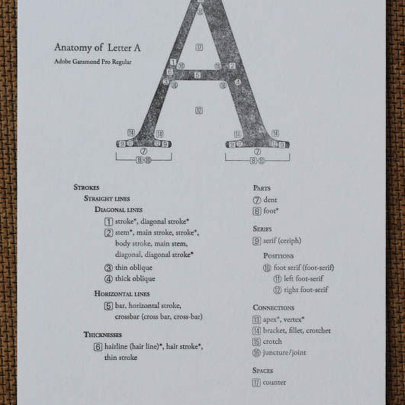 "Letterpress Type Anatomy Postcard ""A"""