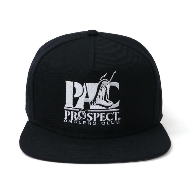 PACCAP2